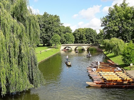 Explore Cambridge on a punting trip down the river