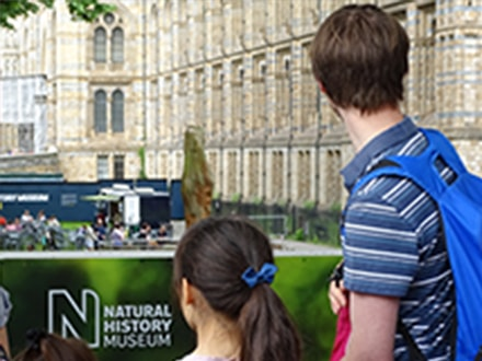 London has numerous family-friendly museums, mostly free to the public, including the magnificent Natural History Museum.