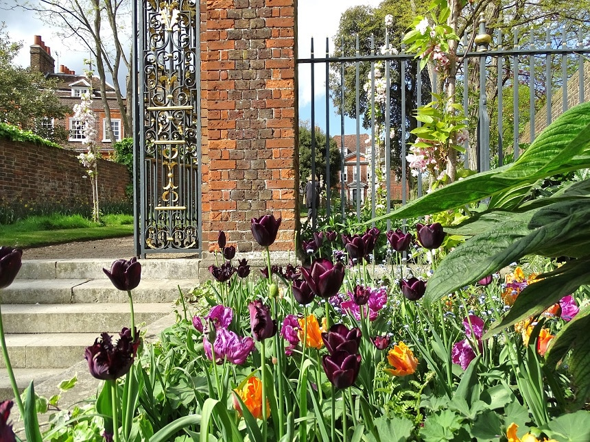 Visit the gardens and orchard at Fenton House, Hampstead