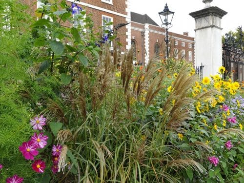 Many of London's hidden green spaces and gardens are open to the public during Open Garden Squares Weekend
