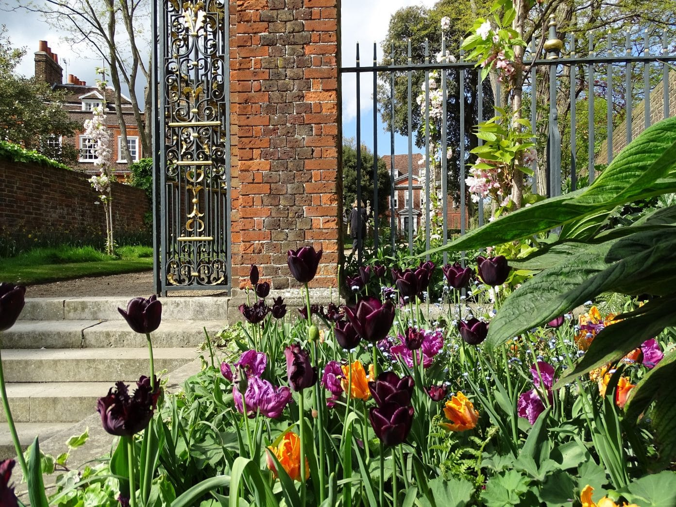 Explore the stunning garden and orchard at Fenton House, Hampstead