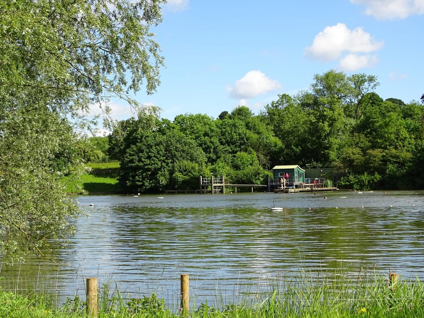 Take a dip in Hampstead Heath's atmospherics swimming ponds