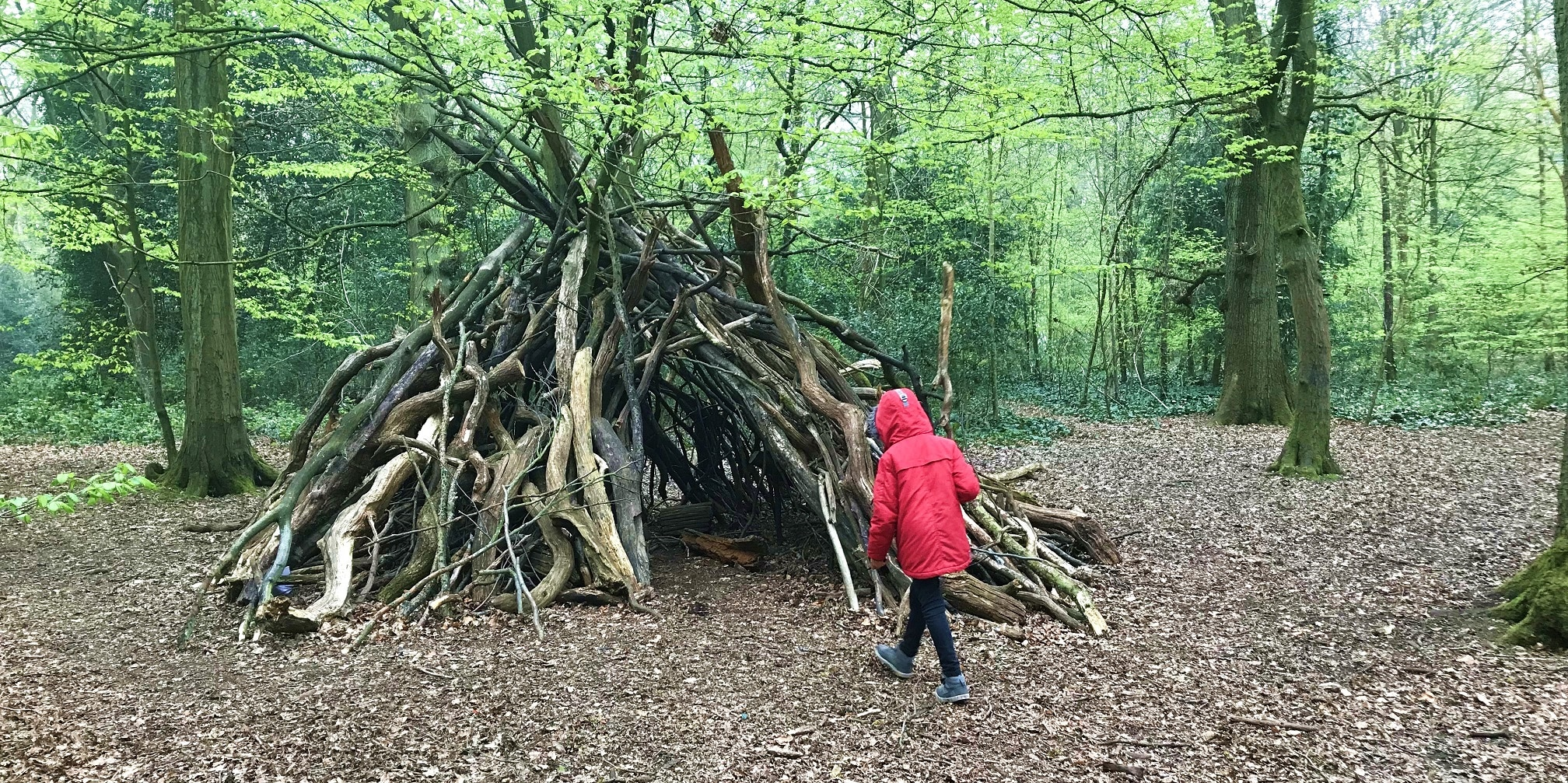 Den building in Highgate Woods | Lingua Holidays
