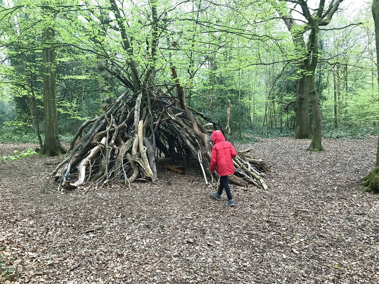 Building dens in Highgate Woods