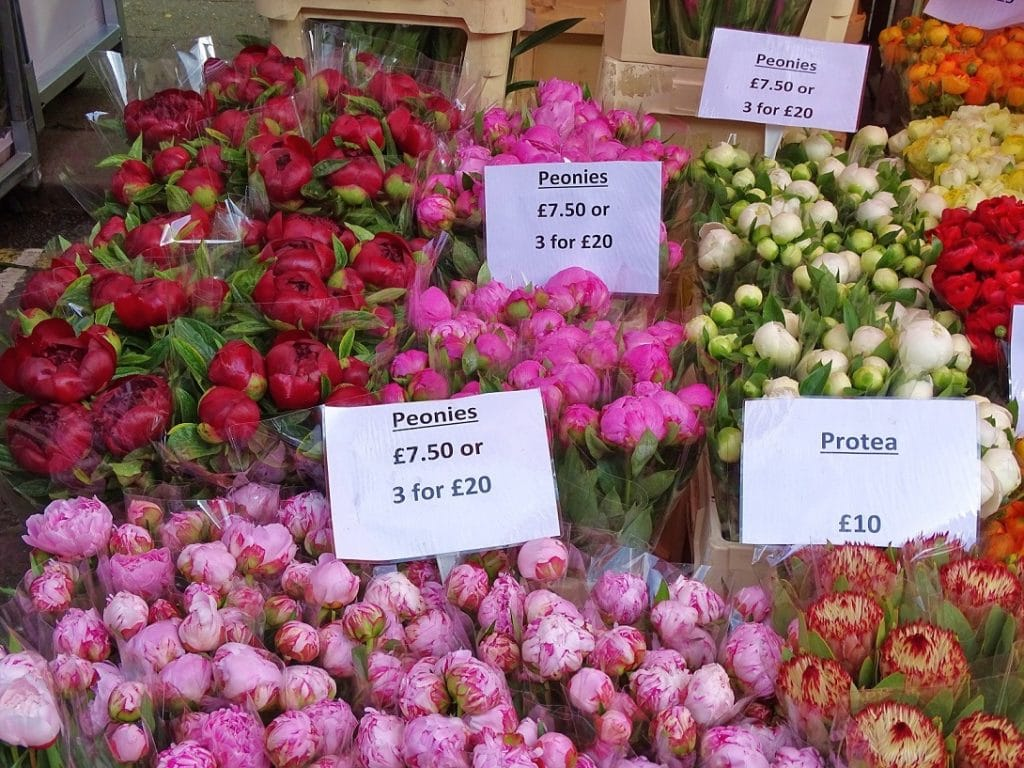 Visit Columbia Road Flower Market for spring blooms and independent boutiques and cafes