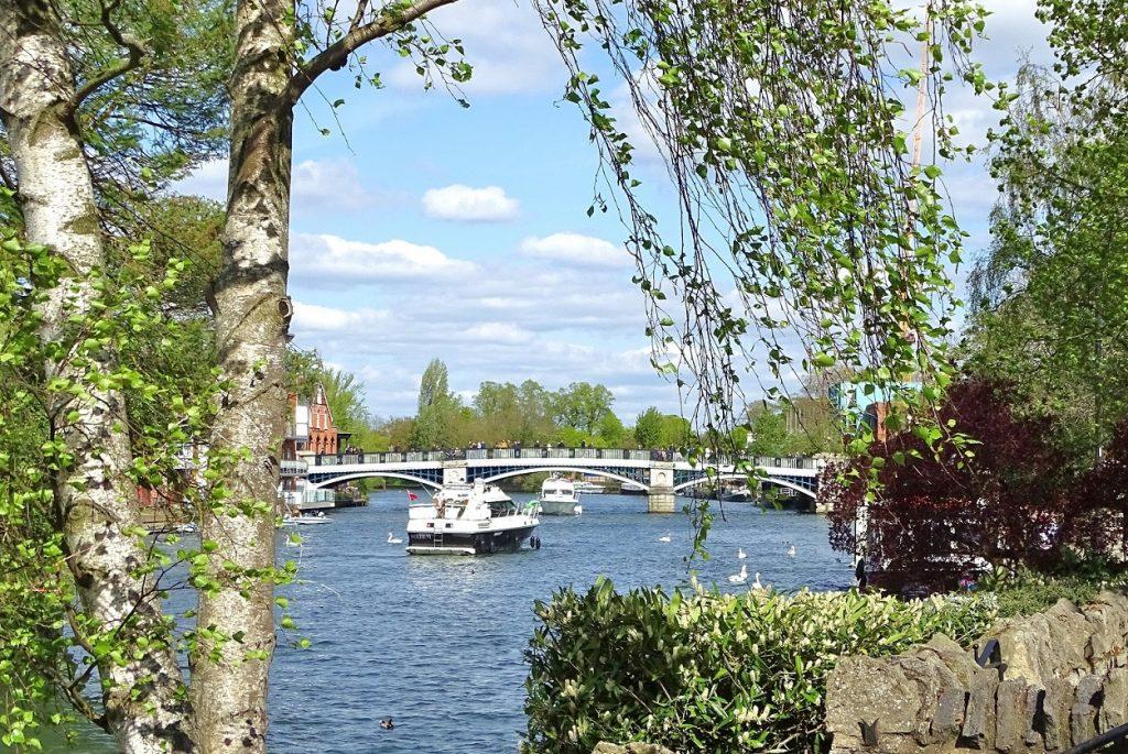 Thames views at Windsor