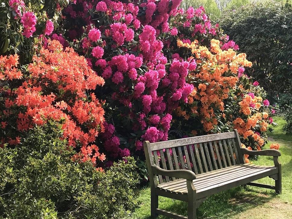 Kenwood Garden in May